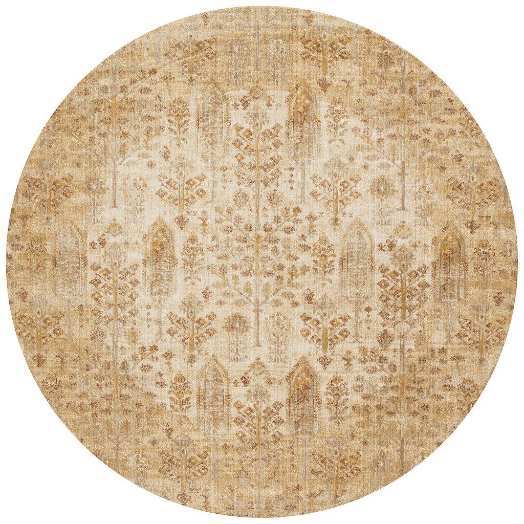 Loloi Anastasia Distressed Detailed Floral Rug