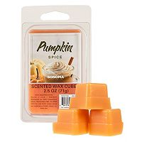 SONOMA Goods for Life™ Pumpkin Spice Wax Melt 6-piece Set