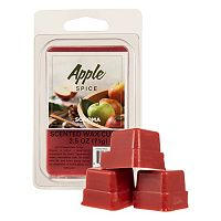 SONOMA Goods for Life™ Apple Spice Wax Melt 6-piece Set