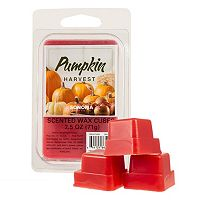 SONOMA Goods for Life™ Pumpkin Harvest Wax Melt 6-piece Set