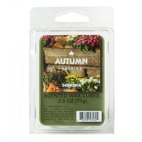 SONOMA Goods for Life? Autumn Hayride Wax Melt 6-piece Set