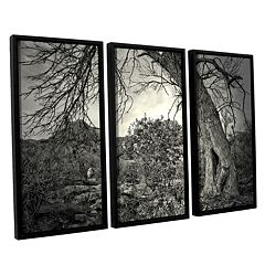 ArtWall Listen To Whispers Framed Wall Art 3-piece Set