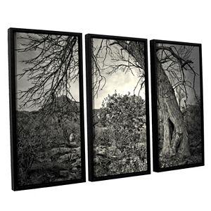 ArtWall Listen To Whispers Framed Wall Art 3-piece Set
