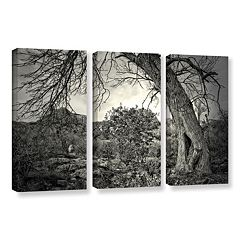 ArtWall Listen To Whispers Canvas Wall Art 3-piece Set