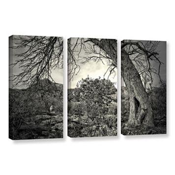ArtWall Listen To Whispers Canvas Wall Art 3-piece Set