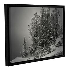 ArtWall 10,000 Feet Of Silence Framed Wall Art