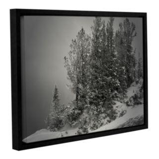 ArtWall 10,000 Feet Of Silence Framed Wall Art