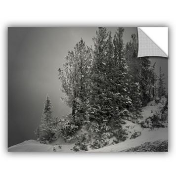 ArtWall 10,000 Feet Of Silence Wall Decal