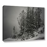 ArtWall 10,000 Feet Of Silence Canvas Wall Art
