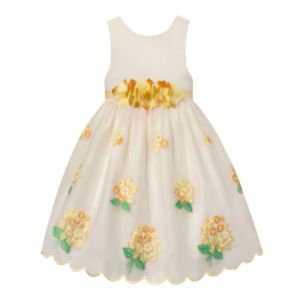 Girls 7-16 American Princess Flower Waist & Embroidered Skirt Dress