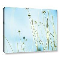 ArtWall 30 Second Daydream Canvas Wall Art