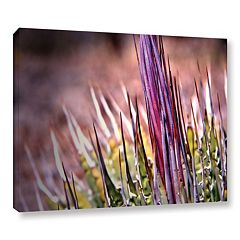 ArtWall Agave Canvas Wall Art