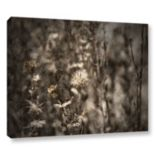ArtWall Dormant Canvas Wall Art