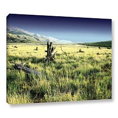 ArtWall Fall Creeps Canvas Wall Art