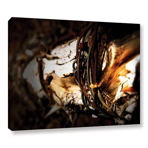 ArtWall Mend Rope & Tree Canvas Wall Art