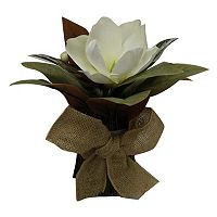 SONOMA Goods for Life™ Artificial Magnolia Flower Table Decor