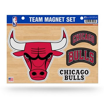 Chicago Bulls Team Magnet Set