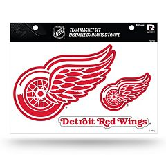 Detroit Red Wings Team Magnet Set