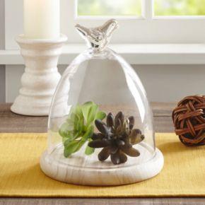 Madison Park Bella Small Bird Glass Dome