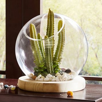 Madison Park Amory Large Bubble Terrarium Table Decor