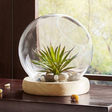 Madison Park Amory Small Bubble Terrarium Table Decor