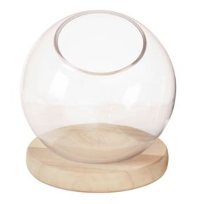Madison Park Amory Medium Bubble Terrarium Table Decor