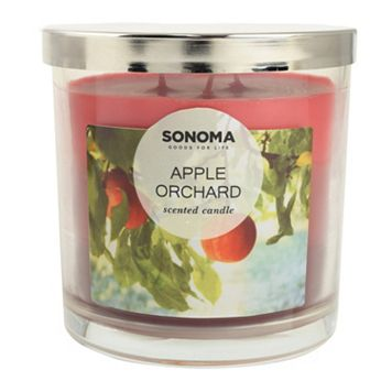 SONOMA Goods for Life™ Apple Orchard 14-oz. Candle Jar