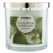 SONOMA Goods for Life? Eucalyptus & Mint Leaf 14-oz. Candle Jar