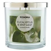 SONOMA Goods for Life™ Eucalyptus & Mint Leaf 14-oz. Candle Jar