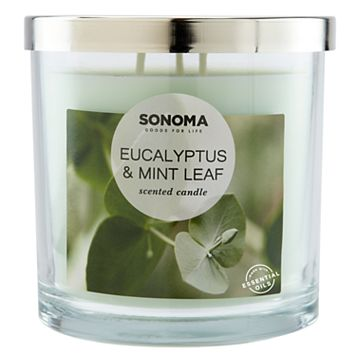 SONOMA Goods for Life™ Eucalyptus & Mint Leaf 14-oz. Candle Jar