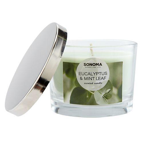 SONOMA Goods for Life™ Eucalyptus & Mint Leaf 5-oz. Candle Jar