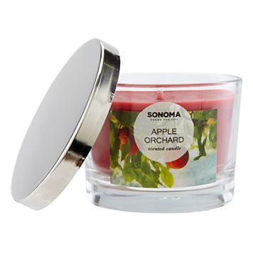 SONOMA Goods for Life™ Apple Orchard 5-oz. Candle Jar