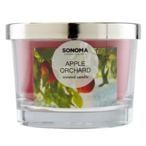 SONOMA Goods for Life? Apple Orchard 5-oz. Candle Jar