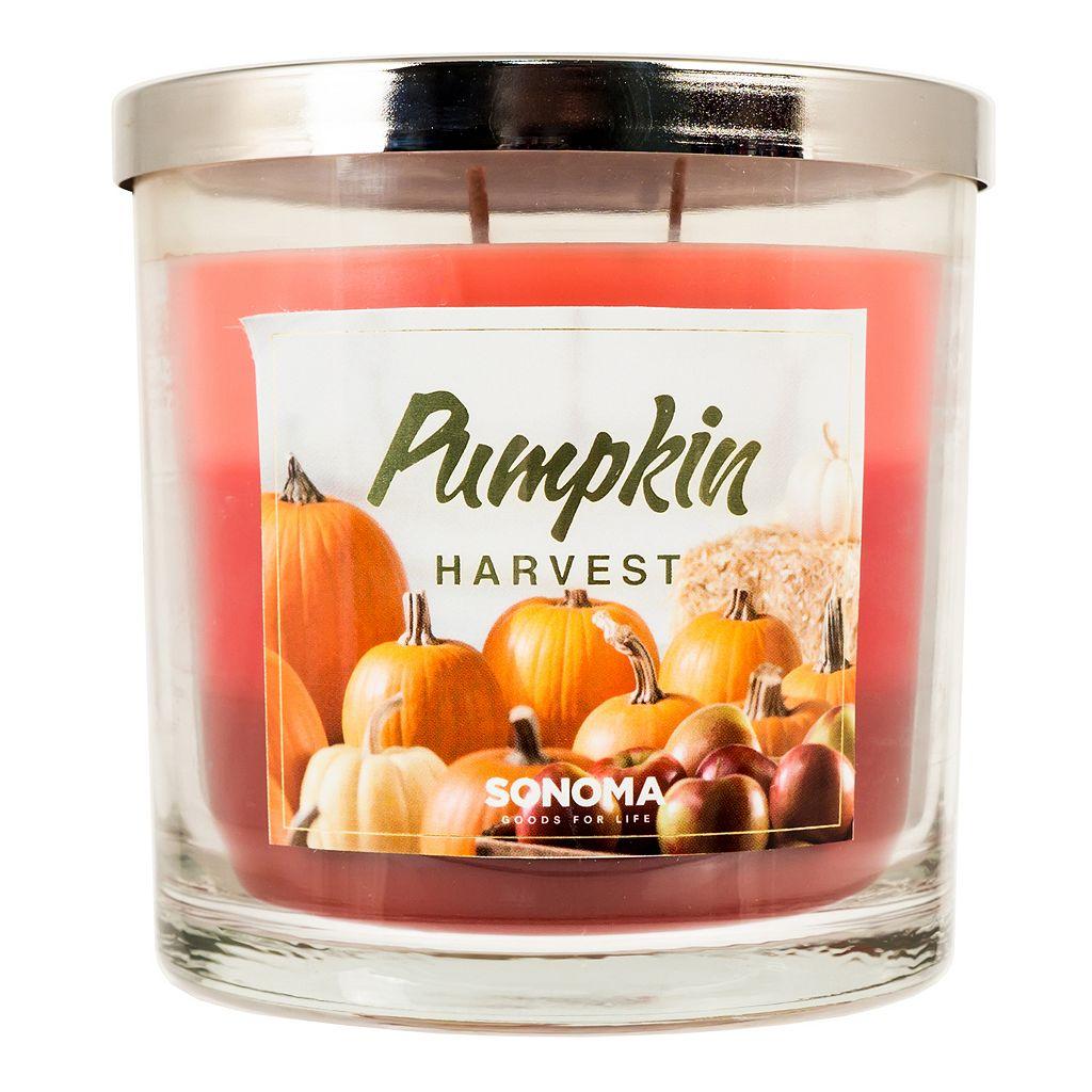 SONOMA Goods for Life™ Pumpkin Harvest 14-oz. Candle Jar