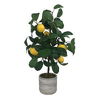 SONOMA Goods for Life™ Artificial Lemon Tree Table Decor