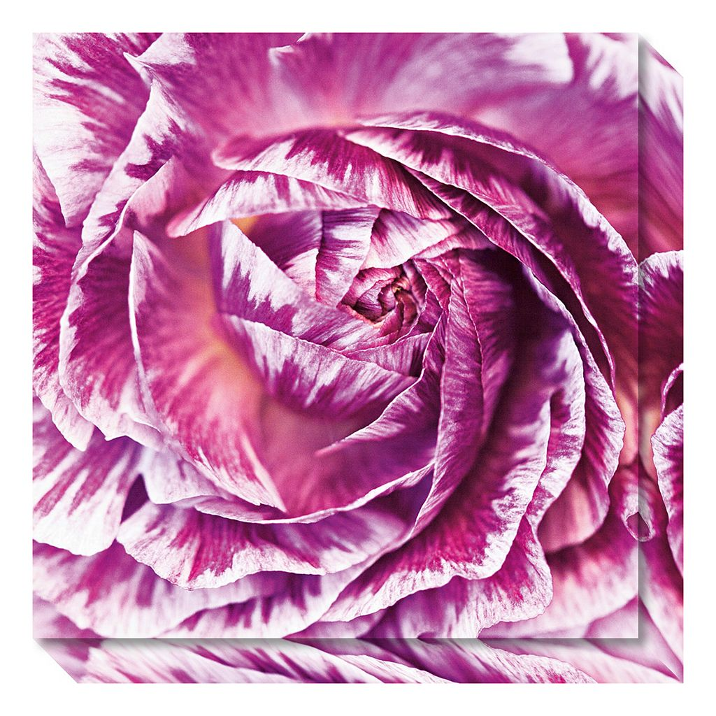 Amanti Art Ranunculus Abstract IV Color Canvas Wall Art