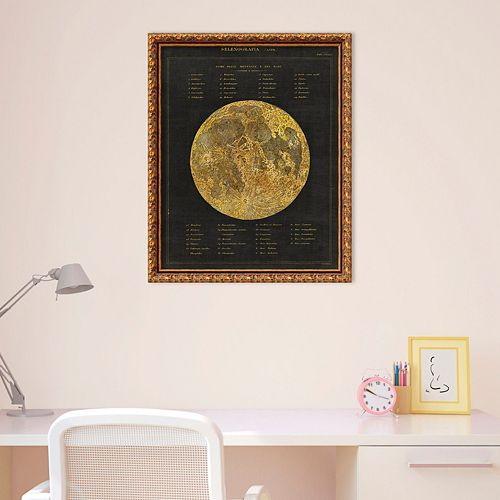 Amanti Art Astronomical Chart I Moon Framed Wall Art
