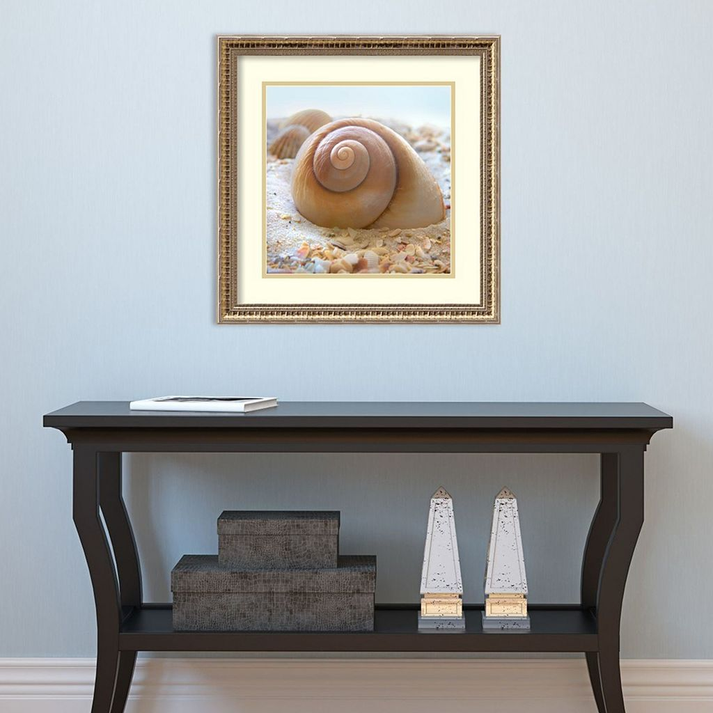 Amanti Art Beachy Shell IV Framed Wall Art