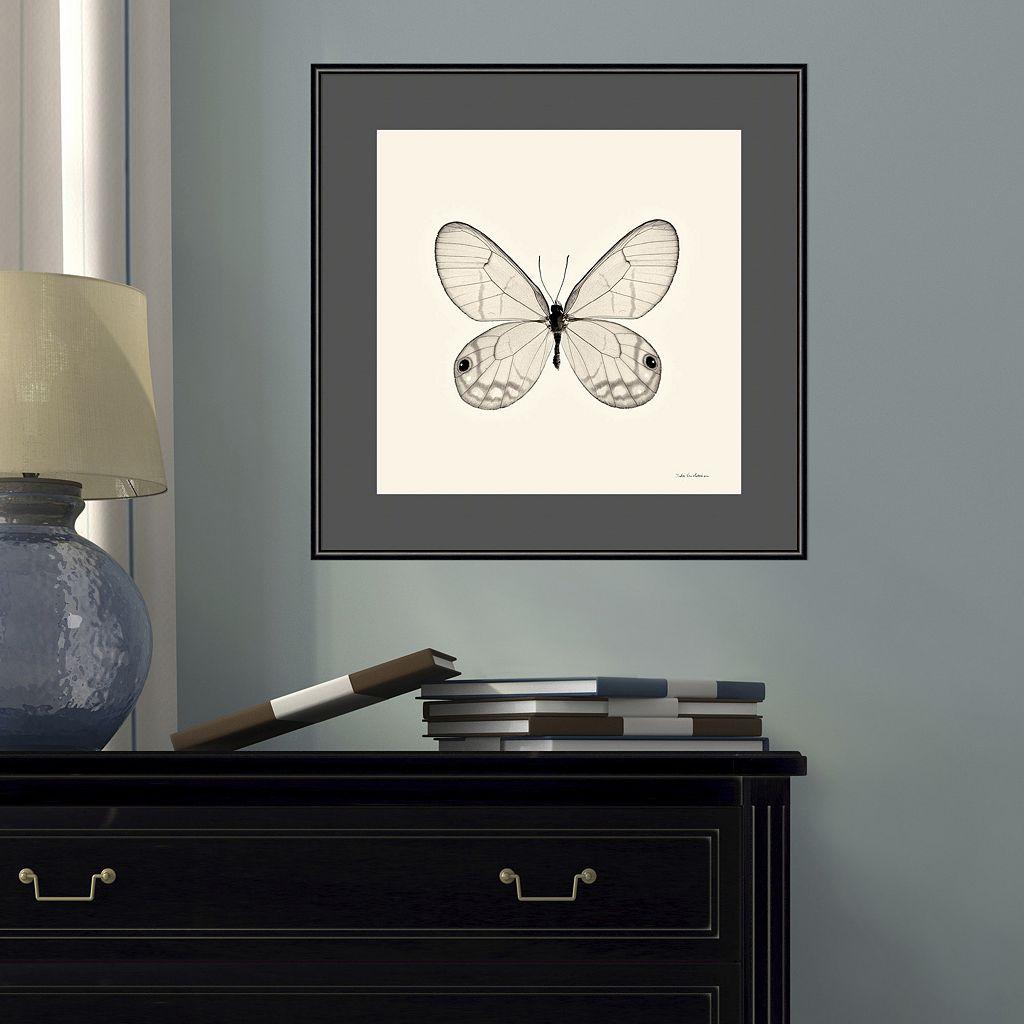 Amanti Art Butterfly I Framed Wall Art
