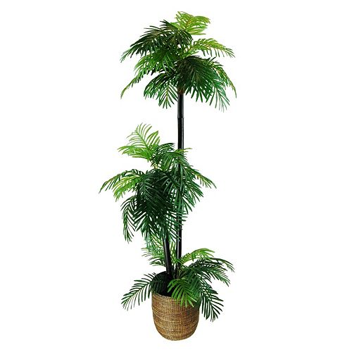 Designs by Lauren Artificial Phoenix Palm Tree