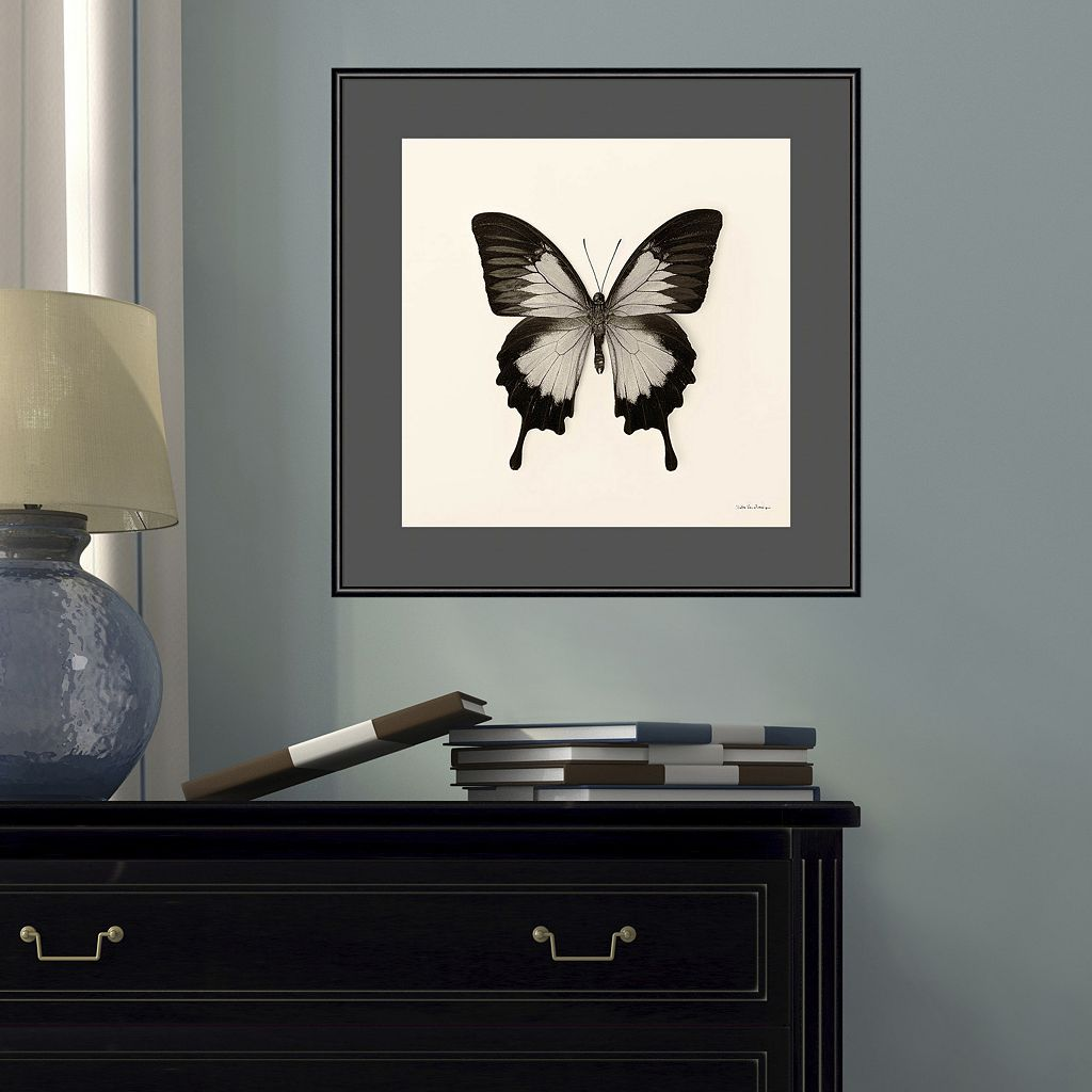 Amanti Art Butterfly III Framed Wall Art