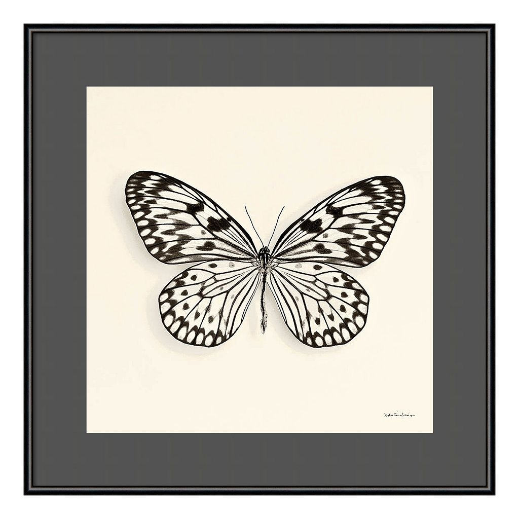 Amanti Art Butterfly V Framed Wall Art
