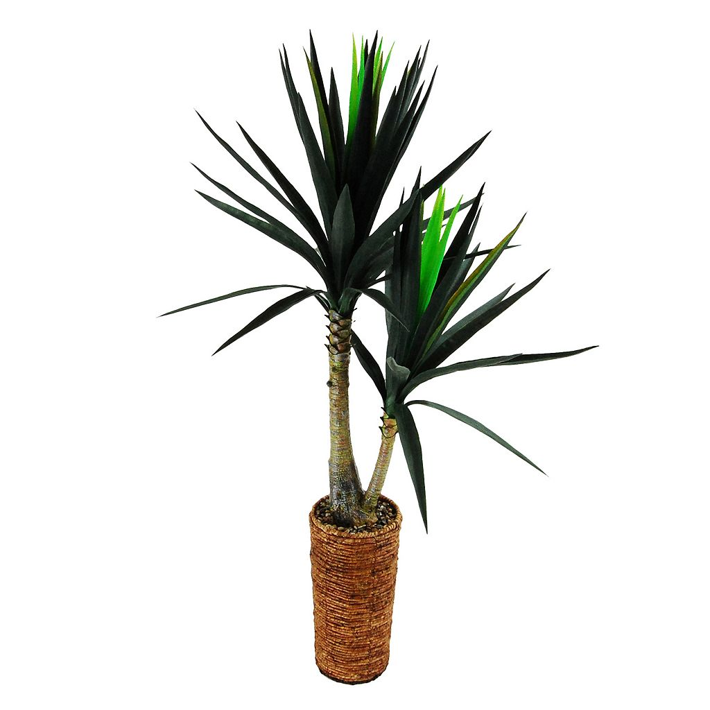 Designs by Lauren Artificial Dracaena Plant