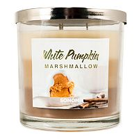 SONOMA Goods for Life™ White Pumpkin Marshmallow 14-oz. Candle Jar