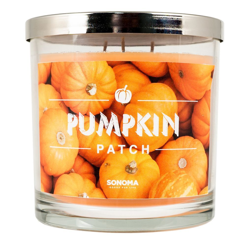 SONOMA Goods for Life® Pumpkin Patch 14-oz. Candle Jar