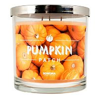 SONOMA Goods for Life™ Pumpkin Patch 14-oz. Candle Jar