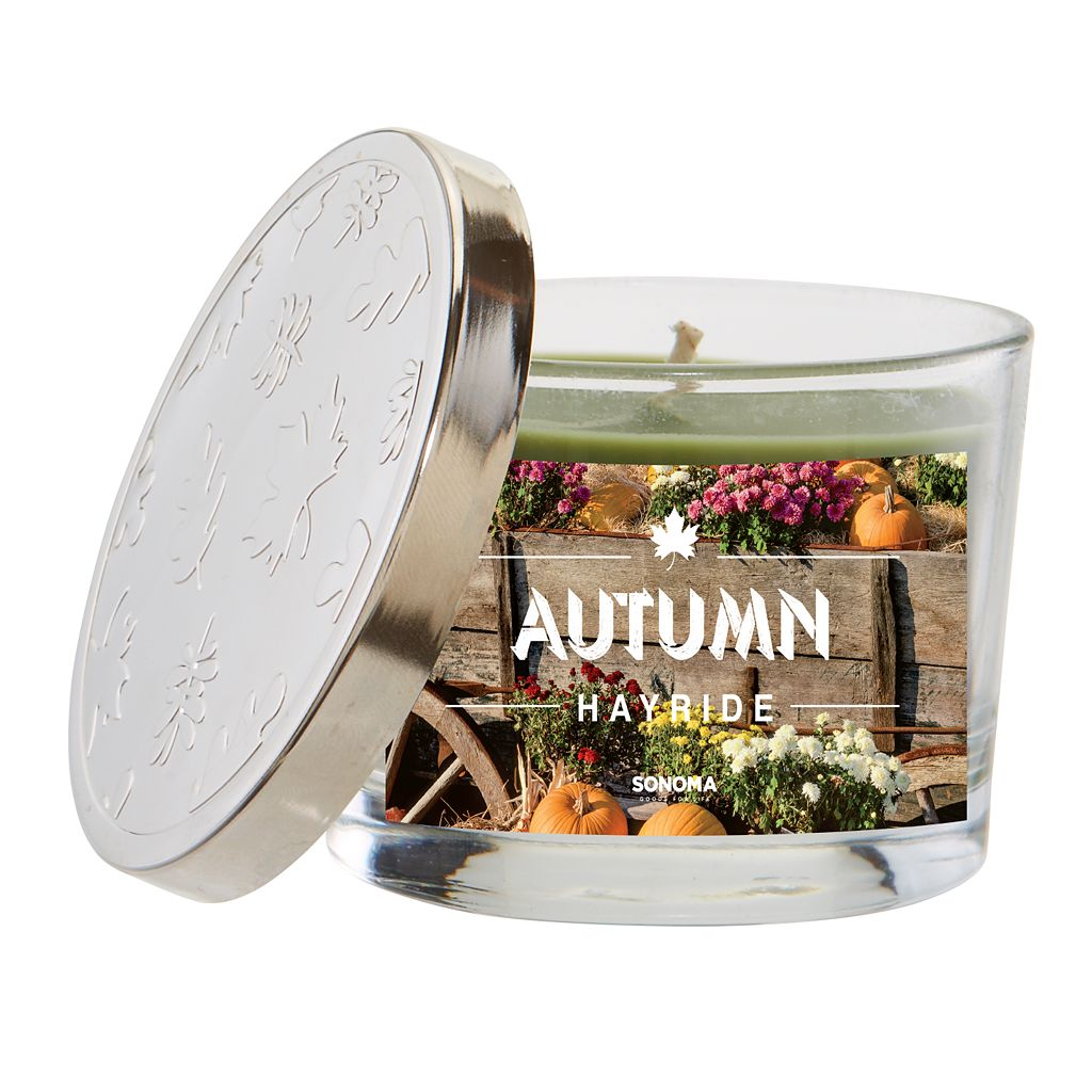 SONOMA Goods for Life™ 5-oz. Autumn Hayride Candle Jar