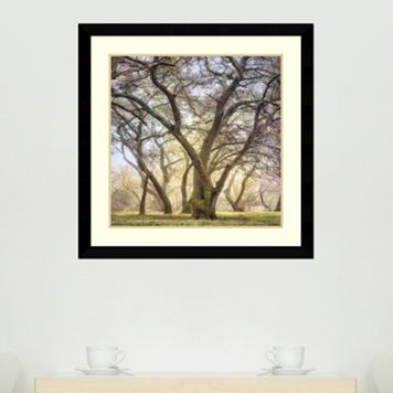 Amanti Art Golden Dawn Framed Wall Art