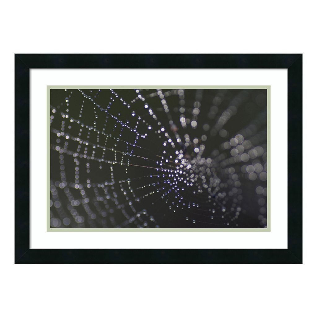 Amanti Art Kaleidoscope Framed Wall Art
