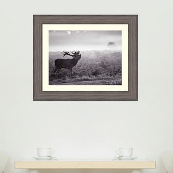 Amanti Art Morning Call Framed Wall Art